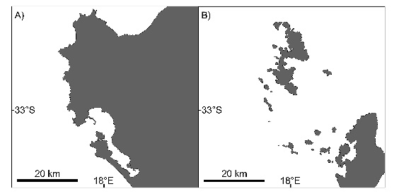 Left: Modern day land surface (gray) in the Saldanha region. Right: Land surface modeled udring a period when sea level was 90m higher during the Early Pliocene. Data from Roberts et al. (2011).